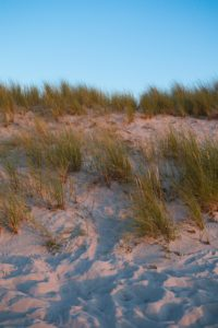 Baltic Sea dunes