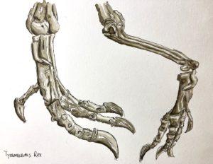 T-Rex feet